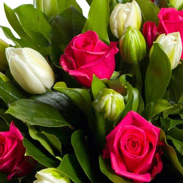 Красивые открытки розы и тюльпаны