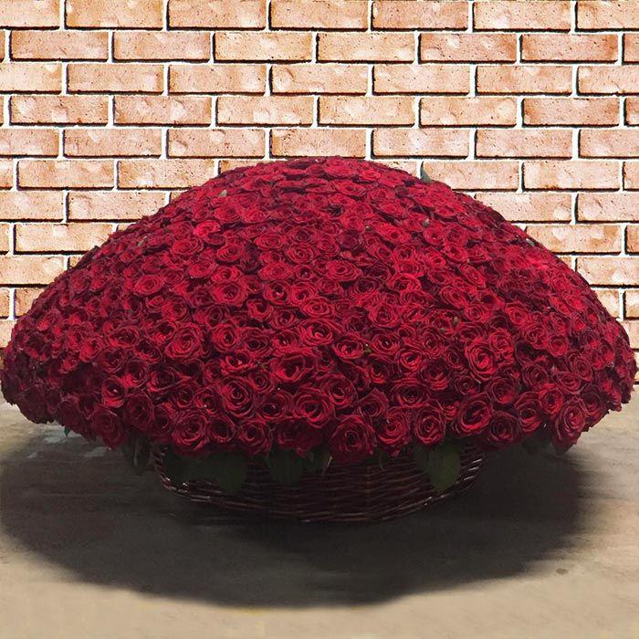 живые розы картинки букеты 1001 роза вот для